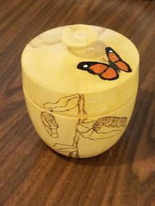 Butterfly box by Tony and Anita Rozendaal