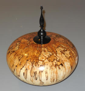 Curtis VanWeelden Hollow Form